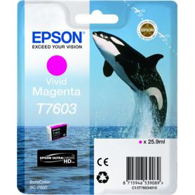 ORIGINAL Epson Cartuccia d'inchiostro magenta (vivid) C13T76034010 T7603 ~1400 Seiten 25.9ml